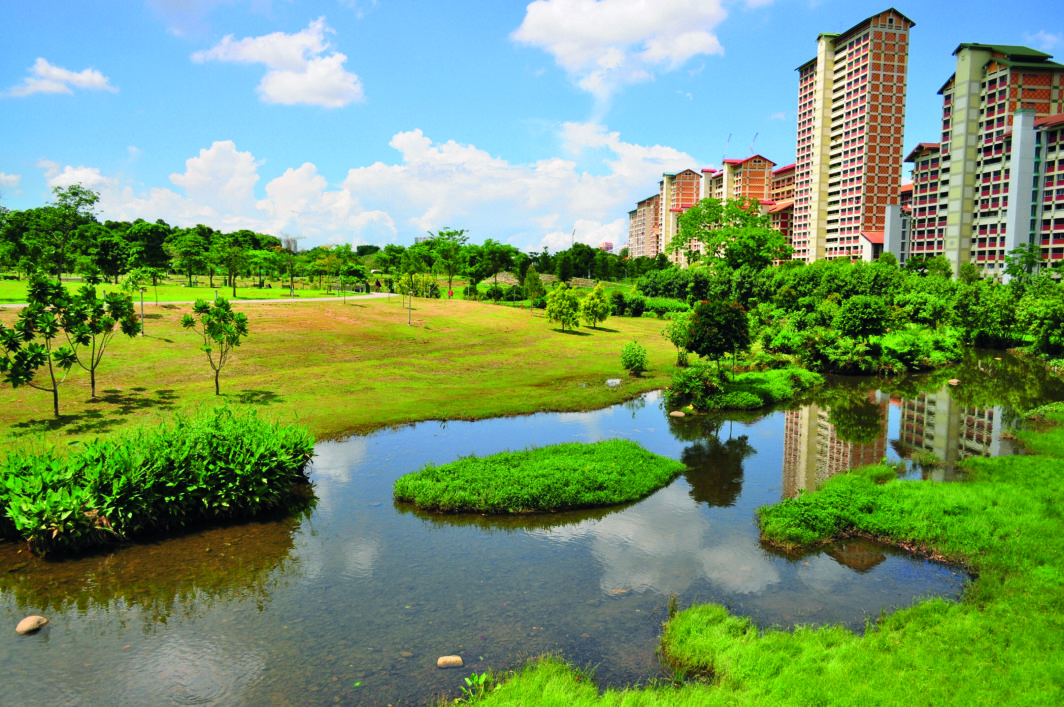 Green pasture with a river at Bishan Park, with some public apartments in the background