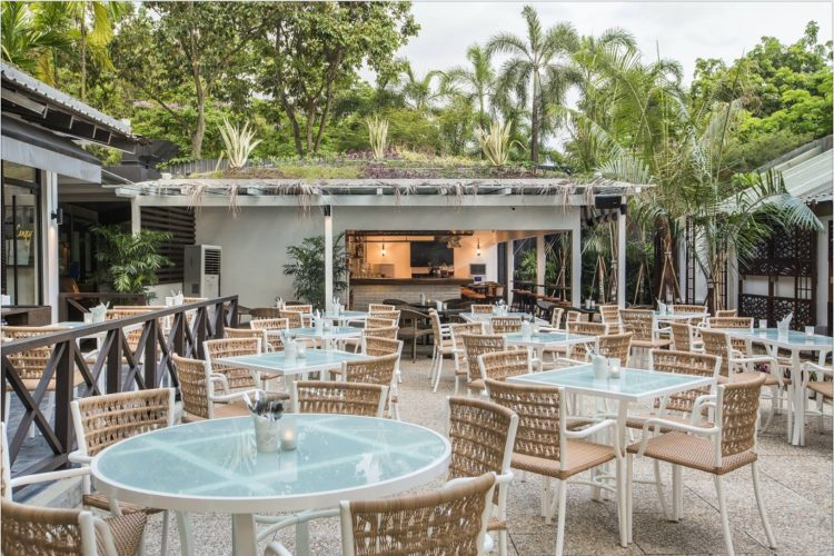 hidden cafes north singapore canopy cafe