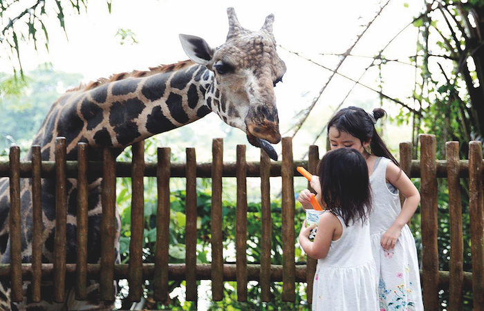 march holidays activities singapore