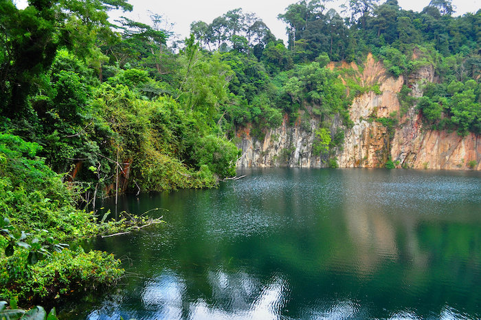 The lake view at Hindhede Nature Park, is one of the best things to do at Hillview suburb in SIngapore