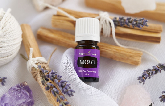 palo santo young living where to buy essential oils in singapore