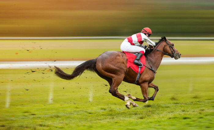 jockey and horse racing, to symbolise having a goal for self improvement
