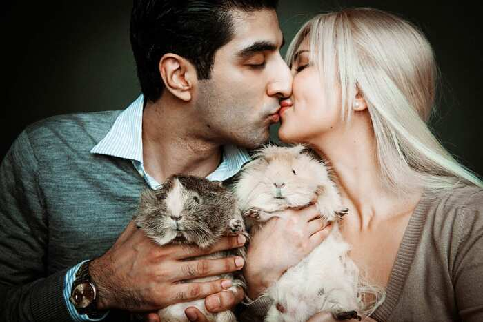 white room photography studios singapore couple kissing with pets family