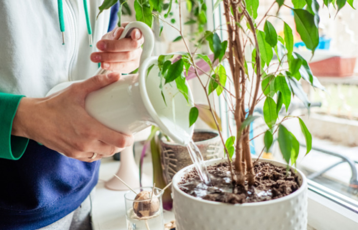 eco friendly home improvements reusing water